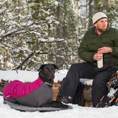 thumb_ruffwear-powderhound-dog-jacket-purple-snow_adaptiveResize_390_390.jpg