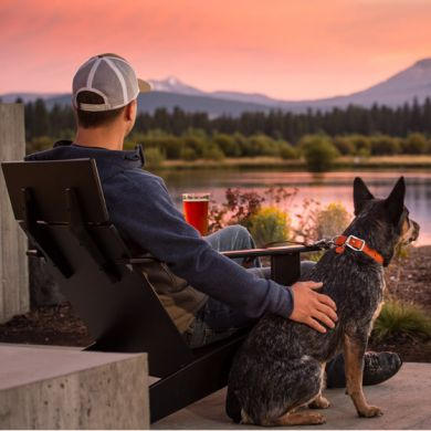thumb_Ruffwear-Frisco-Collar-Sunset_adaptiveResize_390_390.jpg
