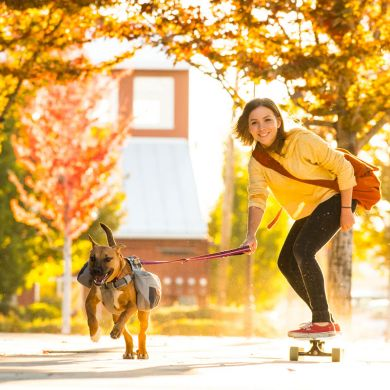 thumb_Ruffwear-Commuter-Dog-Pack-Skate_adaptiveResize_390_390.jpg