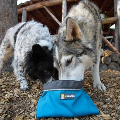 thumb_ruffwear-quencher-collapsible-dog-bowl_adaptiveResize_390_390.jpg