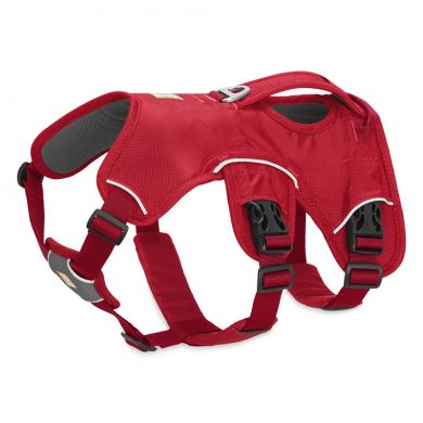 thumb_Ruffwear-Web-Master-Harness-Red-Currant_adaptiveResize_390_390.jpg