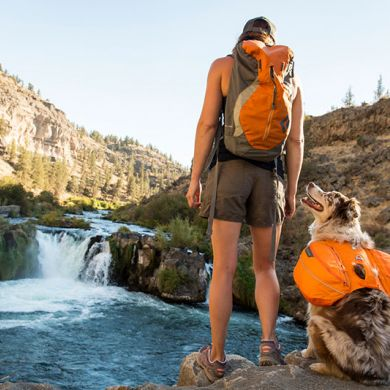 thumb_Ruffwear-Approach-Pack-Back_adaptiveResize_390_390.jpg