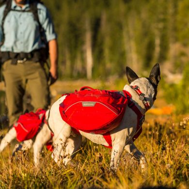 thumb_Ruffwear-Palisades-Pack-Hiking-Side_adaptiveResize_390_390.jpg