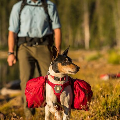 thumb_Ruffwear-Palisades-Pack-Hiking_adaptiveResize_390_390.jpg
