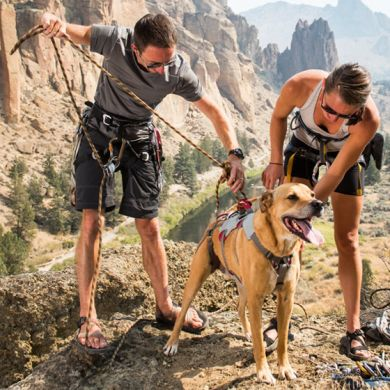 thumb_Ruffwear-Doubleback-Harness-Ropes_adaptiveResize_390_390.jpg
