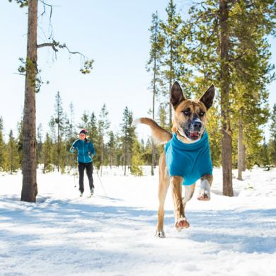 thumb_Ruffwear-Climate-Changer-Dog-Coat-Chest_adaptiveResize_390_390.jpg