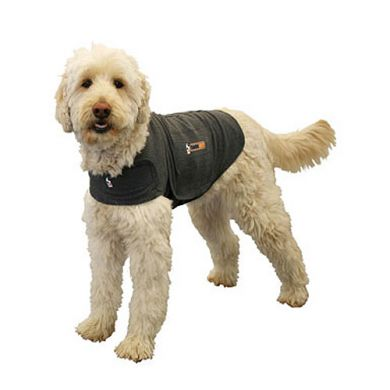 thumb_thundershirt_adaptiveResize_390_390.jpg