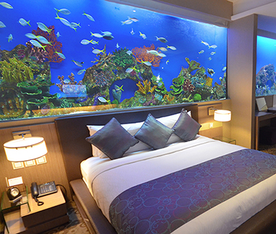 Aqua Supreme Room, H2O Hotel, Manila