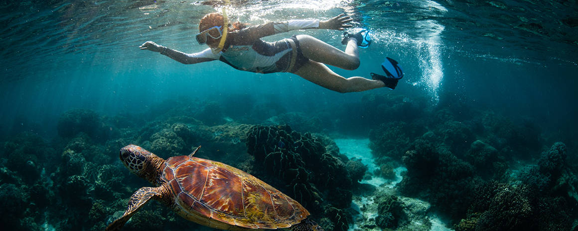 Snorkelling with a giant turtle (Photo: Tommy Schultz)