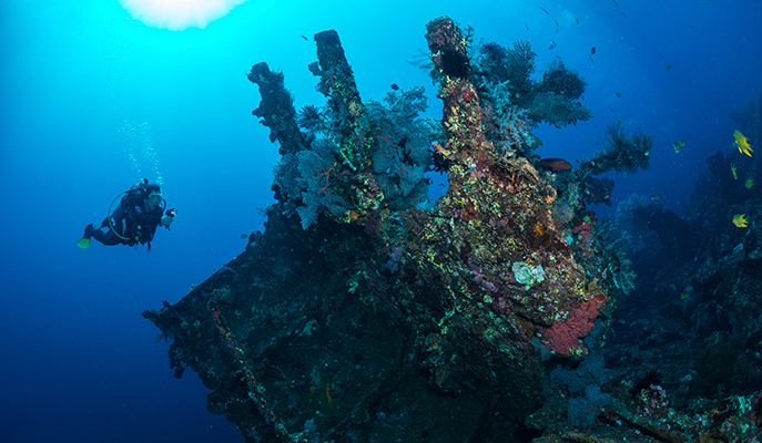 A diver exploring the USS Liberty Wreck at Tulamben