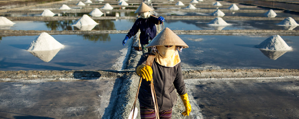 The farmers wear conical hats and cover their faces with handkerchiefs to protect themselves from the sun