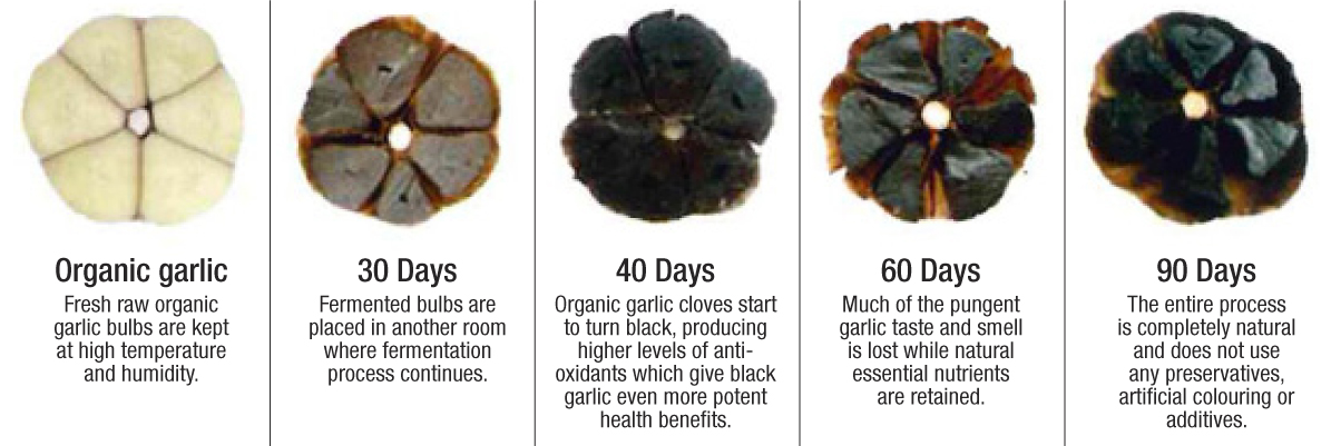Earthly treasures organic black garlic where to eat in singapore