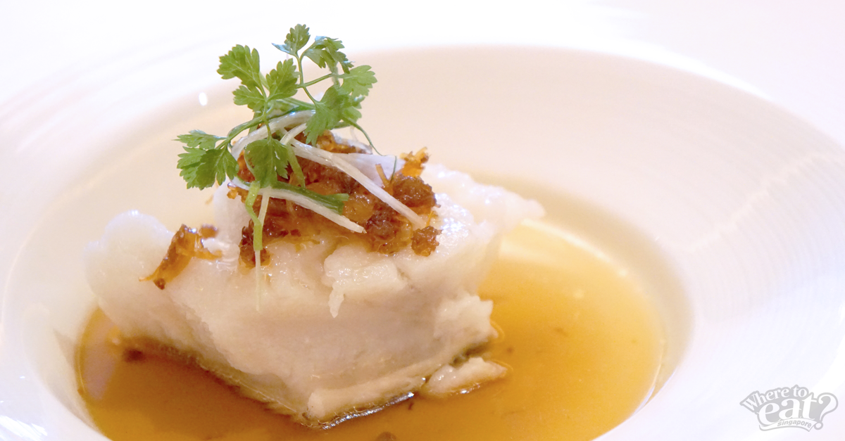Steamed Fillet of Sea Perch with XO Sauce
