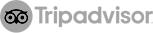 WhyQ Tripadvisor