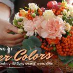 ความหมายของสี กระเช้าดอกไม้ สื่อความหมาย