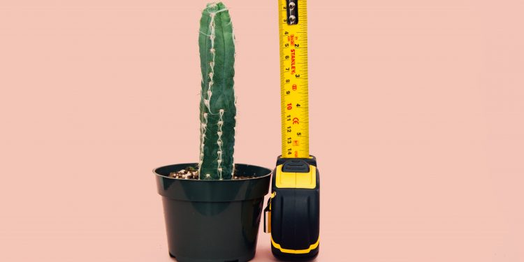 Measure Up - Photo by Charles ?? on Unsplash