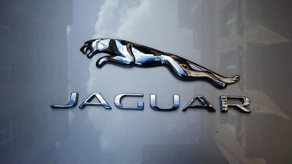 โลโก้รถ Jaguar