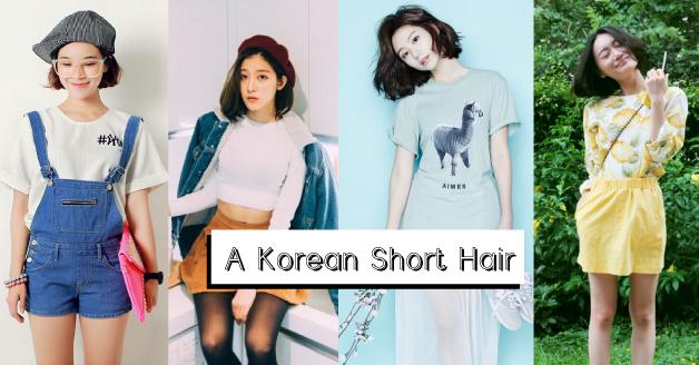 korean-short-hair_fb_cover