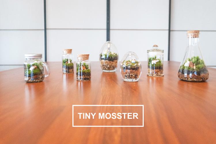 TinyMosster15 (2)