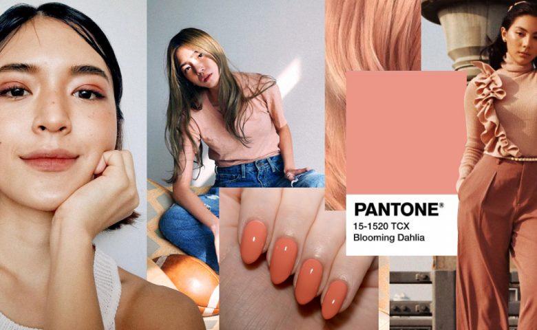 Blooming Dahlia อีก Pantone สุดปังของคนรักสีส้มแห่งปี 2018