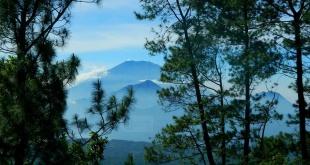 Jajaran pegunungan di balik pepohonan (Foto : Mountains Walker)
