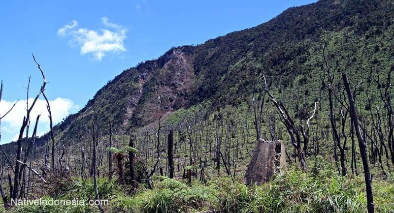 gunung papandayan - bekas villa Belanda. Sumber: NativeIndonesia