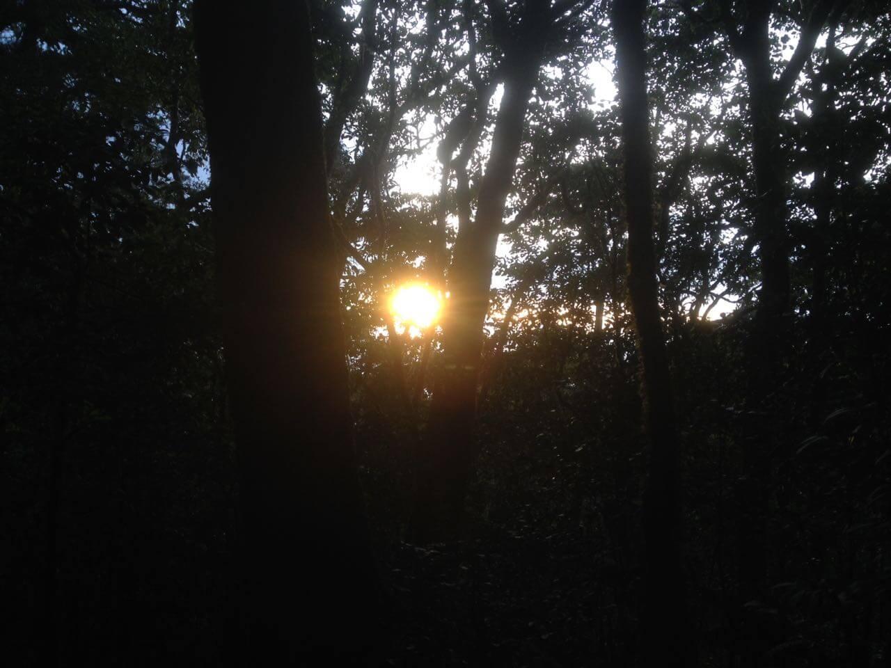 Menikmati Senja di Jalur Pendakian (Foto oleh @afvendiant)