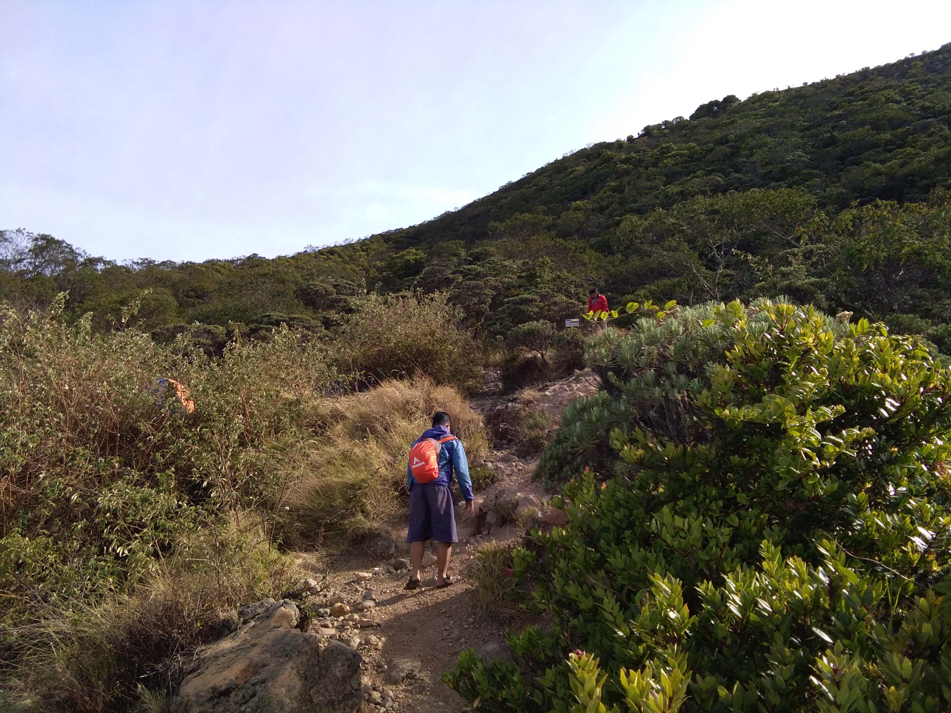 Jalur di atas Pos Goa Walet menuju Puncak Ciremai (Foto oleh : @afvendiant)