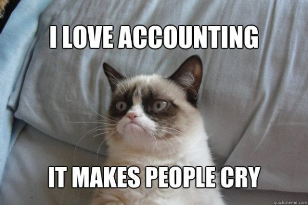 grumpy-cat-love-accounting-makes-people-cry