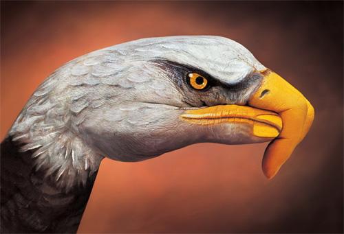 Eagleonhand