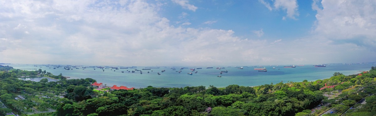 View of East Coast Park from around 60m (about 15 floors) above the site of Seaside Residences - EDGEPROP SINGAPORE