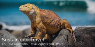 Sustainable Travel for Tour Operators Travel Agents and DMC's