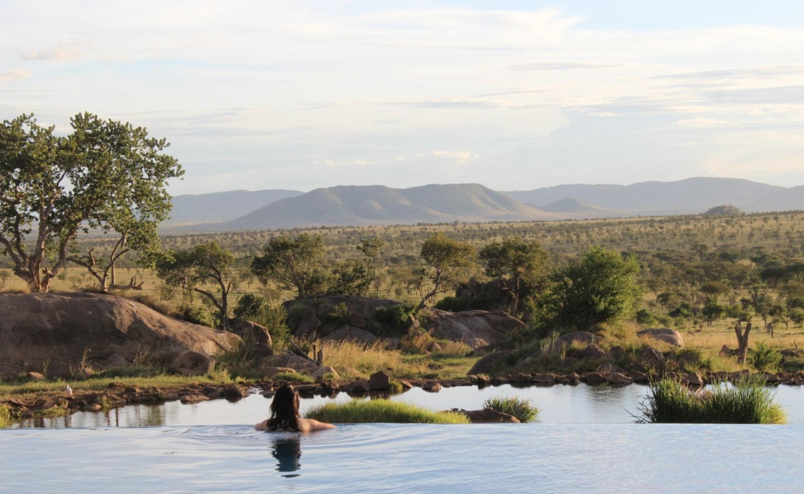Luxury safari tour operator software