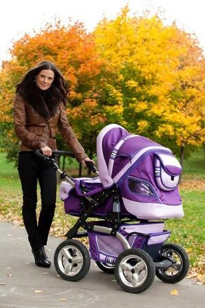 Tips Memilih Baby Stroller