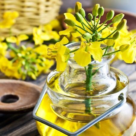 Manfaat Vitamin E Canola Oil Pada Kulit & Rambut