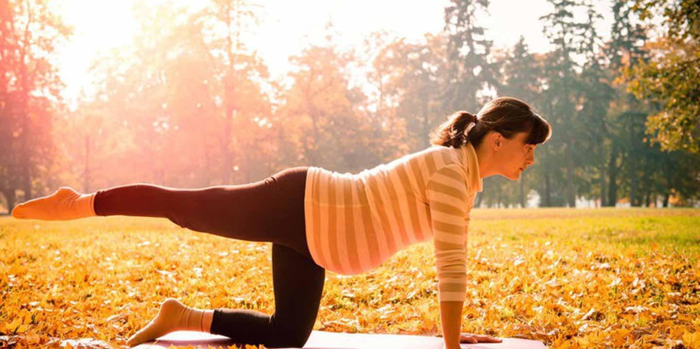 Zwitsal   Manfaat Olahraga bagi Ibu Hamil