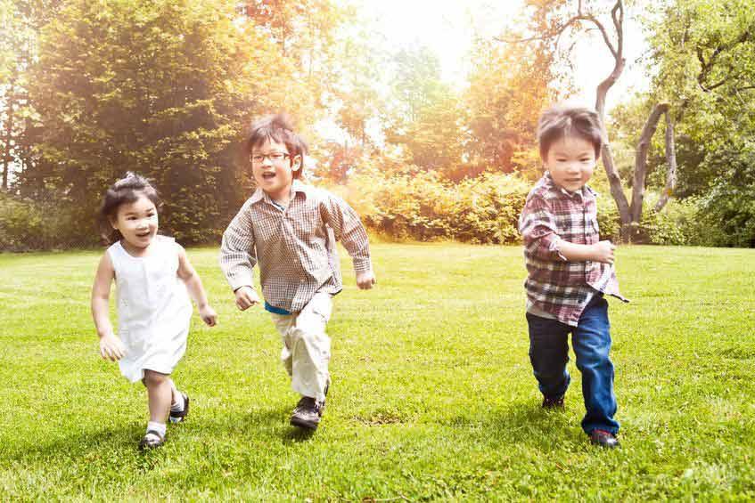Mengembangkan Kecerdasan Naturalis pada Anak