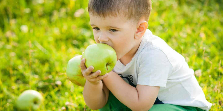 Rangsang Pertumbuhan Gigi Si Kecil dengan Buah-Buahan Renyah