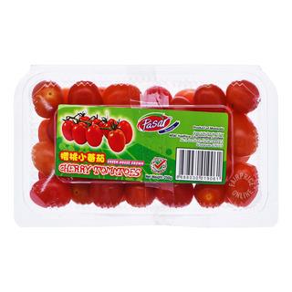 Pasar Cherry Tomatoes