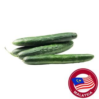 Pasar Japanese Cucumber