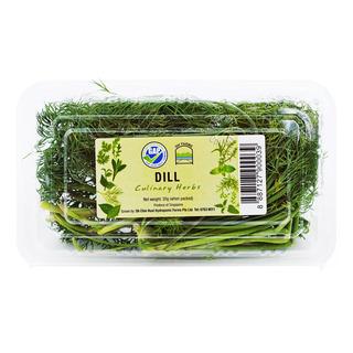 Oh' Farms Culinary Herbs - Dill