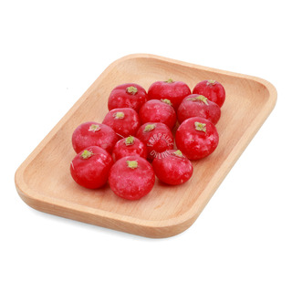 Holland Red Radish