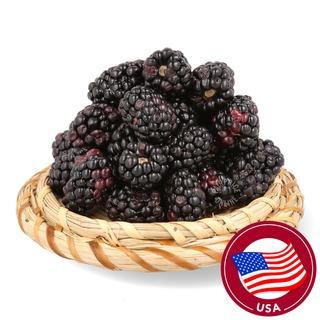 Driscoll's USA Organic Blackberries