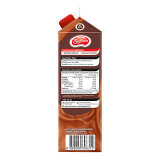F&N Magnolia Fresh Milk - Chocolate