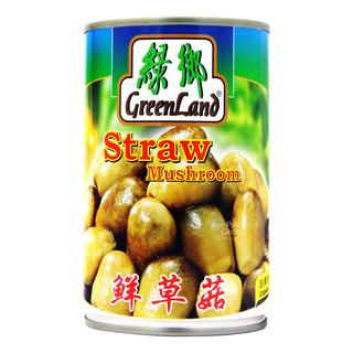 Green Land Mushroom - Straw