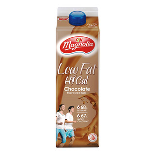 F&N Magnolia Low Fat Hi-Cal Milk - Chocolate