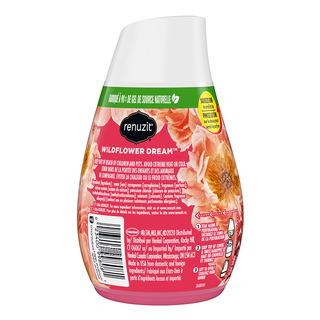 Renuzit Gel Air Freshener - Wildflower Dream