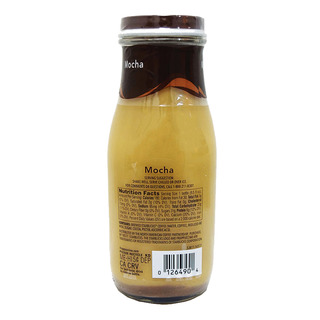 Starbucks Chilled Frappuccino Bottle Coffee - Mocha