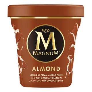Magnum Ice Cream - Almond (Pint)
