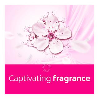 Softlan Aroma Therapy Fabric Softener - Sakura Romance
